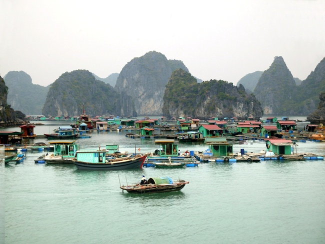 thing to to in halong bay-Vietnam Eco Travel