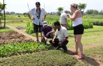 Experience At Tra Que Herb Village Tour-Private Tour