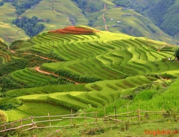 Sapa Trekking Tour By Sleeping Bus