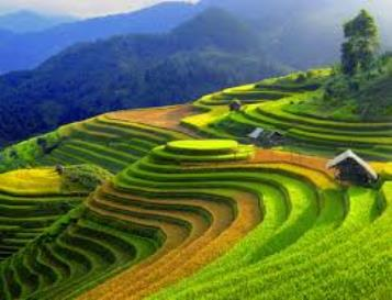 Sapa Trekking Tours By Sleeping Train
